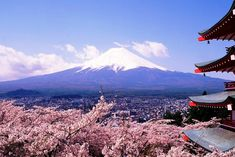 17, Fujisan, sacred place and source of artistic inspiration (후지산)