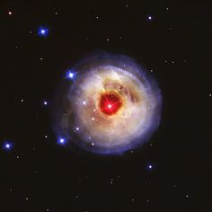 #NASA When you see the star, V838 Monocerotis, what does it remind you of?