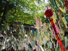 貴船神社の七夕笹飾り