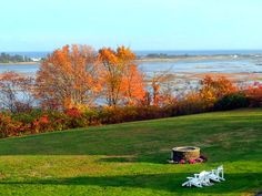 Marsh in the fall Bocce Court, Workout Rooms, Outdoor Pool, Marines, Golf Courses, Ocean, Fall, Autumn, Bocce Ball Court