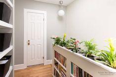 Комнатные растения в интерьере квартиры: оформление дизайна растениями