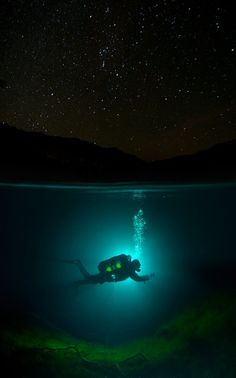 i want to scuba dive one day...not night though