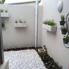 unique courtyard