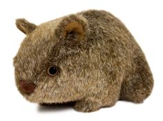 This cute little fella is a replica of one of Australia's favourite native animals. Standing at 10cm tall by 17cm long and Australian made, this wombat is a great gift to take or post overseas.