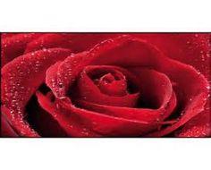 Risultato immagine per quadro con rosa rossa quadri