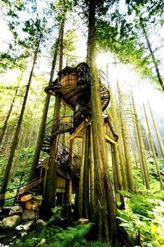 The Enchanted Forest Treehouse, Revelstoke, BC