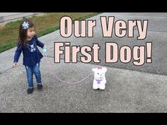 Our First Dog! - August 15, 2015 -  ItsJudysLife Vlogs
