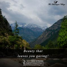 What can be better than spending time on the lap of Himalayas. Experience the breathtaking Mountains at The Himalayan Village Resort. Visit us : www.thehimalayanvillage.in  #TheHimalayanVillageResort #Kasol #himachal