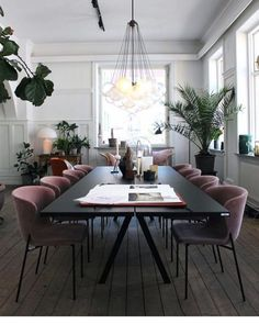 Dusky lilac pink velvet dining chairs look fantastic in this dining room and work well with the house plants.