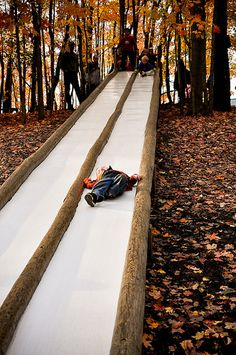 This looks like fun! Taken at Patterson Farms in Ohio, this slide is 50 feet lo… This looks like fun! Taken at Patterson Farms in Ohio, this slide is 50 feet long and is hidden in the woods next to a big wooden fort!