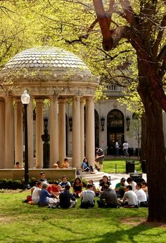 on the lawn at Columbia University