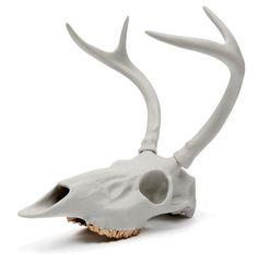 White Tailed Deer (Odocoileus virginianus)  Raw Porcelain W/14K Gold Teeth, Christine Facella, Beetle & Flor, 2013