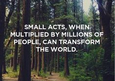 Wise Words: Small Acts, when multiplied by millions of people, can transform the world. Great Quotes, Quotes To Live By, Inspirational Quotes, Change The World Quotes, Fantastic Quotes, Motivational Board, Random Quotes, Uplifting Quotes, Awesome Quotes