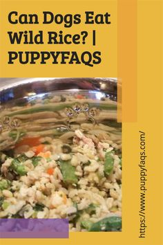 Visit here to check out can dogs eat wild rice on PuppyFAQS Blog! If you are looking to find out if it's safe to give your puppy wild rice dinner, then this is the blog post for you! For the definitive guide on Can Dogs Eat Wild Rice, click to be directed to the PuppyFAQS blog. Can Dogs Eat, Wild Rice, Dog Eating, Different Recipes, Diet, Canning, Health, Blog, Check