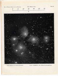 1955 pleiades original vintage celestial astronomy print - constellation taurus