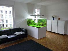 Aparrment modern aquarium #aquarium