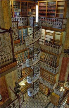 Beauty and the Best Library Ever!