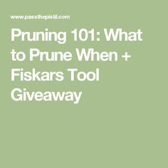 Pruning 101: What to Prune When + Fiskars Tool Giveaway