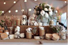 Cotton flowers- great centerpiece idea for a Louisiana theme.