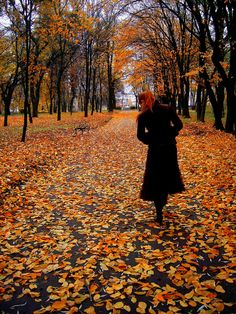 Autumn in Ostroh by ~Valcom2the on deviantART