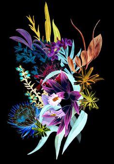 Sinister Garden - SURROCODELIA // Victoria Garcia