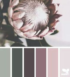 flora tones, by design seeds Design Seeds, Colour Pallette, Colour Schemes, Color Combos, Pantone, Green Design, Design Color, Palette Design, Decoration Palette