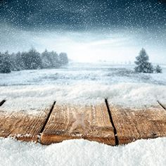 Kate Christmas Backdrops Photography Frozen Snow Wood Floor Background Forest for Children Photo Studio Christmas Backdrops For Photography, Winter Photography, Photography Backdrops, Snow Forest, Tree Forest, Gray Tree, Frozen Snow, Winter Images, Grey Skies