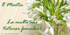 8 Martie, Birthdays, Happy Birthday, Herbs, Plants, Friday, Anniversaries, Happy Brithday, Urari La Multi Ani