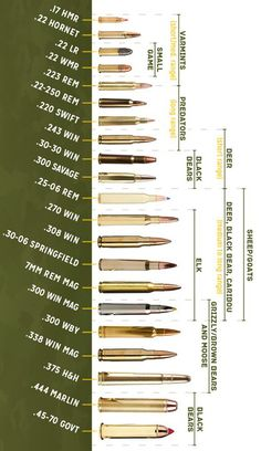 How To Choose the Right Caliber - I always wondered what caliber