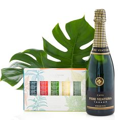 Cinq Mondes Bath Amp Shower Oils And Cava Summer Gifts For Her