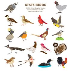 """State birds from """"Sticker Road Trip: 50 States""""."""
