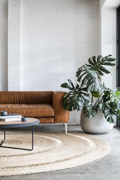 Walter Sofa designed by Cameron of Otherworks - Floor Plants - Ideas of Floor Plants - Concrete floor brick wall tan leather couch plant. Love: colors aesthetics feel cozy light bright modern casual natural materials mixed with minimalism foliage! Big Living Rooms, Living Room Modern, Rugs In Living Room, Living Room Designs, Living Room Decor, Small Living, Dining Room, Living Room Flooring, Living Room Carpet