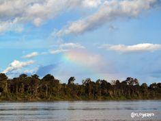 Amazonas, lago Tarapoto