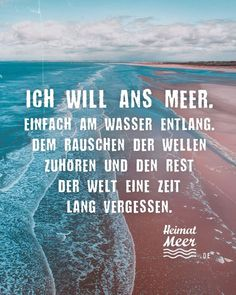 Heimatmeer - Ich will ans Meer!🌊Mee(h)r >> - Love Quotes For Him Deep, Soulmate Love Quotes, Insightful Quotes, Inspirational Quotes, Beautiful Flower Quotes, Flowers Quotes Tumblr, Summer Quotes Instagram, Chivalry Quotes, Intellectual Quotes