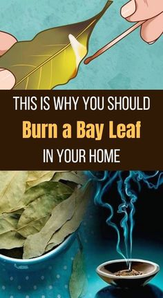 is Why You Should Burn a Bay Leaf in Your Home The inhalation of the smell provides various health benefits.The inhalation of the smell provides various health benefits. Mental Health Articles, Health And Fitness Articles, Health Tips, Health Fitness, Health Care, Yoga Fitness, Natural Health Remedies, Natural Cures, Herbal Remedies