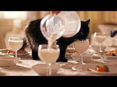 Loto Libanais: Black cats on holiday.