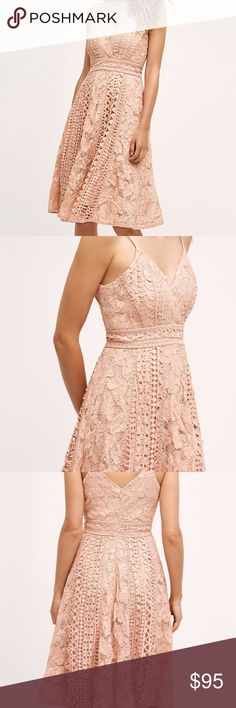 ANTHROPOLOGIE ASTRID DRESS Ooh la la! We love the intricate details and feminine cut of this blushed pink dress. Pair yours with sparkly jewellery, strappy heels and party invites.  By Champagne and Strawberry Polyester, spandex Zip closure Dry clean Imported Anthropologie Dresses Midi