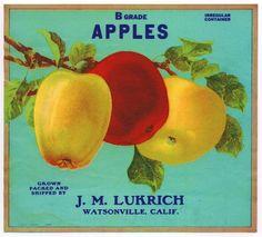 cross stitch  vintage signs and labels | Vintage Apple Label Handmade Cross Stitch Pattern Chart | eBay