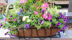"""Beautiful flower container the easy way...just """"drop-in"""" for gorgeous displays!"""