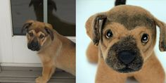 send a photo of your dog and they create a stuffed animal that looks just like them!!! I love it!