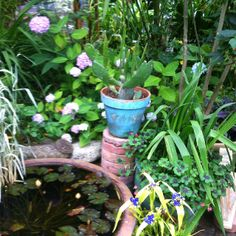 Water feature in Little & Lewis Garden