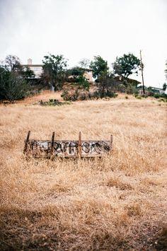 Sparse hillside. Los Angeles. Voigtlander Bessa R3A, 40mm f/1.4 on Kodak Ektar 100. 1/2000 @ f/2. #visibleinlight