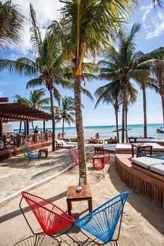 Blue Parrot Playa del Carmen Mexico Address and Map Maui Vacation, Beach Trip, Dream Vacations, Quintana Roo Mexico, Mexico Yucatan, Beautiful Places To Visit, Beautiful Beaches, Riviera Maya, Places To Travel