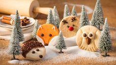 Rezept für Igel-Kekse - Waldtier-Kekse. Jetzt ausprobieren und von weiteren köstlichen Backrezepten und Schmankerln aus Österreich inspirieren lassen!