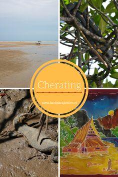 Cherating is een leuk klein stadje waar je prima kunt surfen. Doe een boottocht door de mangrove, maak zelf batik en geniet van de sfeer van Cherating.