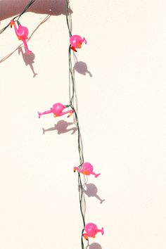 how to throw a flamingo fiesta | kelly golightly