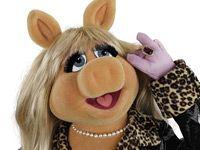 http://www.bluray-disc.de/artikel/31978-interview-mit-miss-piggy-zum-bevorstehenden-blu-ray-start-von-die-muppets
