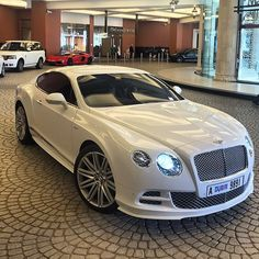 The Millionaire Club ( Fancy Cars, Cute Cars, Bentley Gt, Cars Usa, Bentley Continental Gt, Car Goals, Toyota Cars, Expensive Cars, Car Car