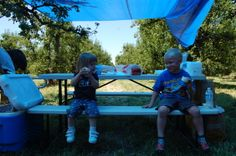 Farm Trail Sampler- first association event in 2011 at Steamboat Acres- kids activities making butter www.sacriverdeltagrown.org