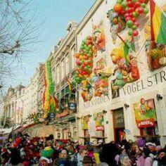 Café In de Oude Vogelstruys in Mestreech. Versierd met rood, geel en groen: de kleuren van Carnaval.